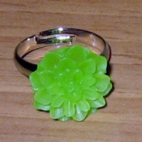 "Ring ""Groen Margriet"""